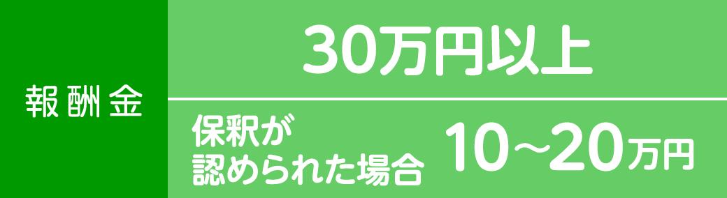 報酬金30万円以上 保釈が認められた場合10〜20万円
