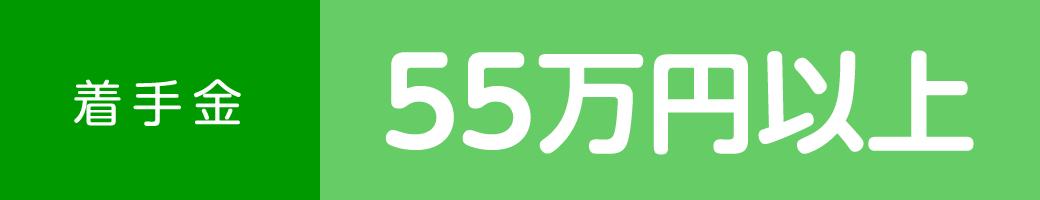 着手金 55万円以上